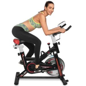 Dolphy exercise spin bike