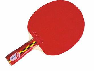Top 6 best table tennis racket under 2000 2
