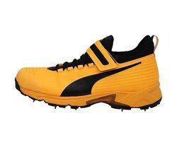 Puma Bowling Cricket Shoe